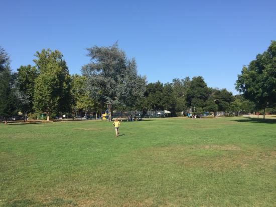 Rinconada Park