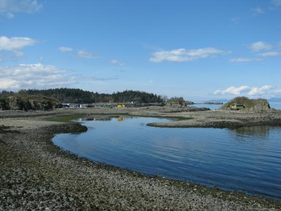Nanaimo, Canada: Low tide makes possible to walk to Shack Island
