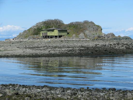 Nanaimo, Canadá: Shack Island