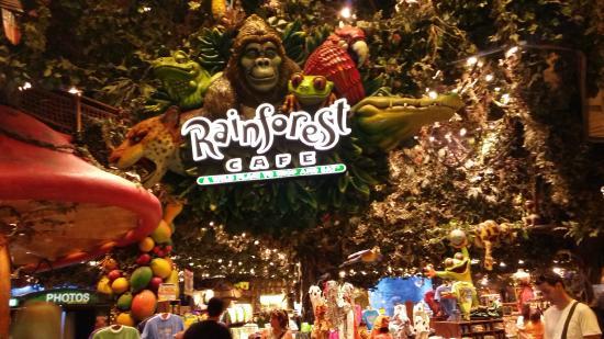 Rainforest cafe deals london