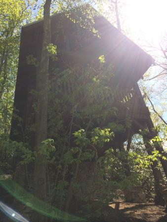 Cheshire Cabin & Treehouse Rentals: the tree house from below