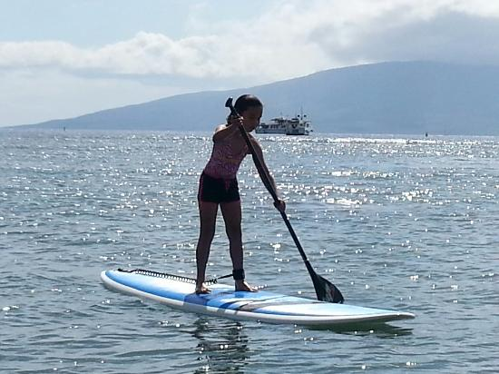 Image result for Maui Stand Up Paddle Board Rental
