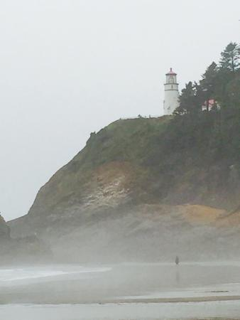 Florence, OR: The beach near the Heceta Light House is better than the lighthouse itself.