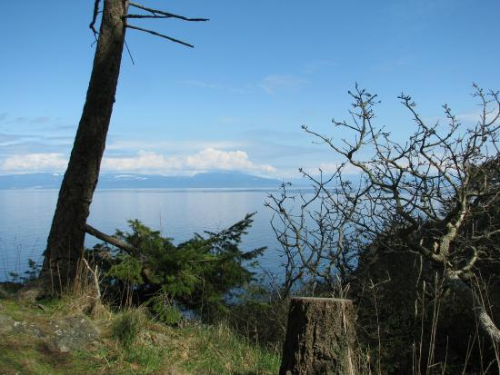 Nanaimo, Canada: View from the small hilltop
