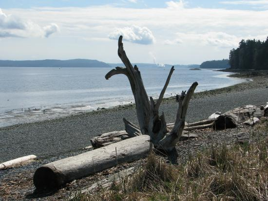 Nanaimo, كندا: View from the pathway