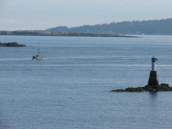 Nanaimo, كندا: View from the beach