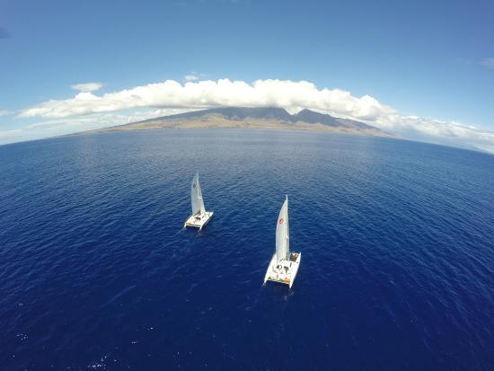 Paragon Sailing Charters Maui