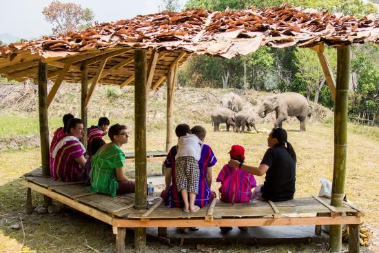 Gachorgwa Elephant Camp