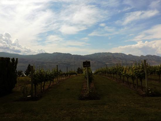 West Kelowna, Canadá: Mission Hill WInery