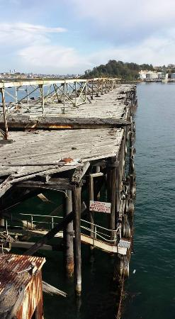 Balls Head Reserve: Disused wharf near coal loader
