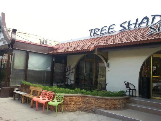 Tree Shade Spa: Outside