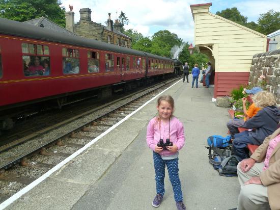 Fadmoor, UK: Goathland Station - home of Heartbeat