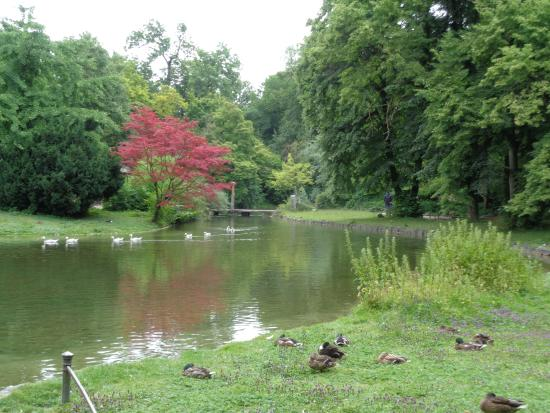 Quiet pond picture of english garden munich tripadvisor for English garden pool