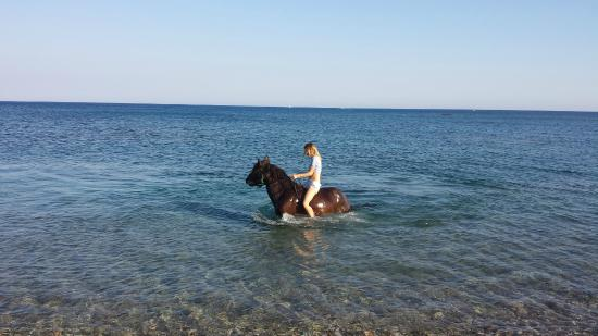 Apolakkia, Grécia: Cooling off after the ride