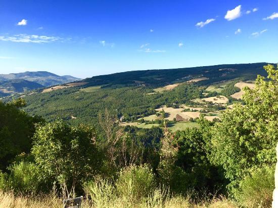 Alto Poggio: View from one of the hills