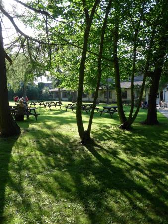 Dunstan, UK: Garden seating