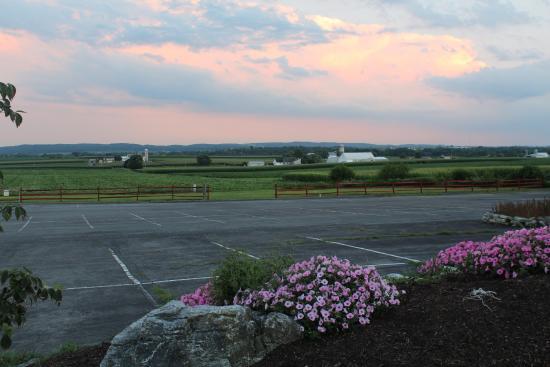 Harvest Drive Family Inn: Parking lot view