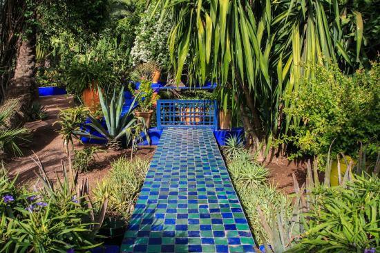Jardin majorelle picture of jardin majorelle marrakech for Jardin 87