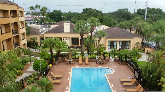 Courtyard Tampa Westshore/Airport: Spacious, clean and friendly staff.