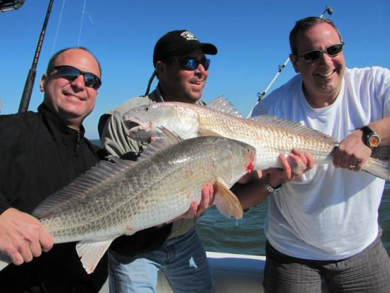 Stray Cat Charters: redfishing