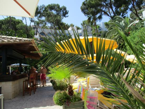 Hotel Bon Sol Majorca Tripadvisor