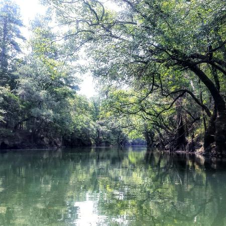 Altha, FL: Chipola River Outfitters