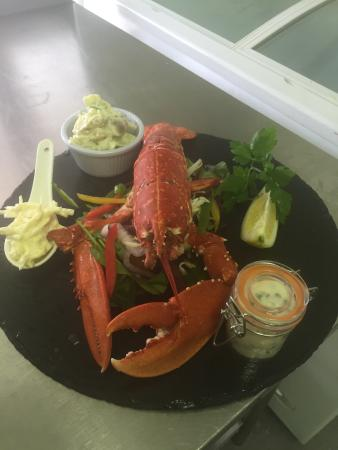 Dungarvan bay local lobster