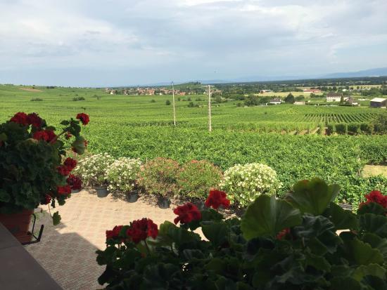 Hotel le Relais du Vignoble : Udsigt fra balkon