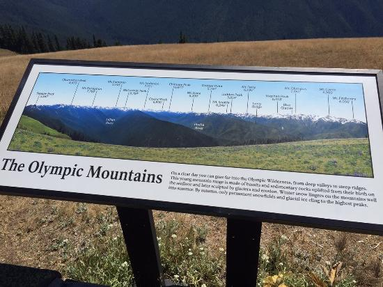 Hurricane Ridge: All the mountain peaks that are visible