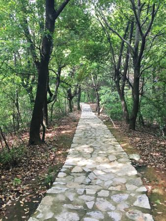 Tongling County, Çin: Walking in the river park