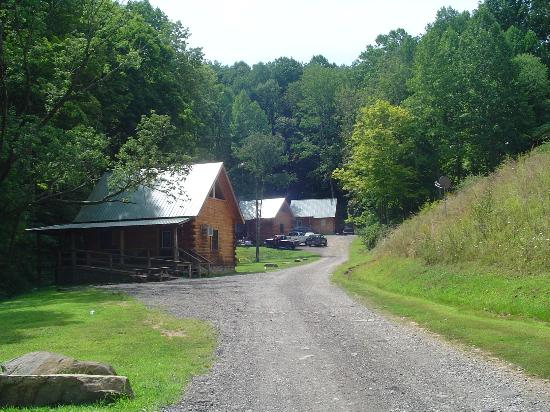 Hillbilly Haven Log Cabin Rentals: Cabins 3-5