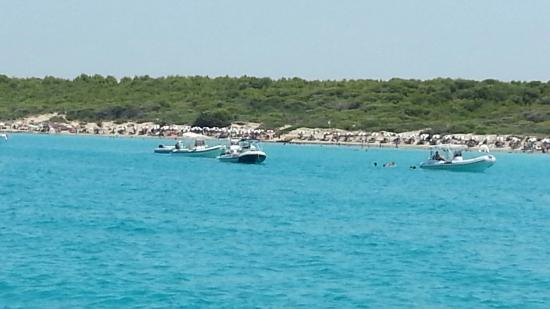 Marina Yachting Portolano - Day Excursions & Boat Rentals