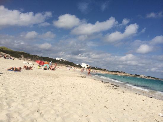 Hotel Voramar: One of many beautiful sandy beaches