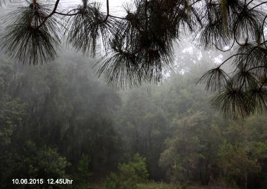 Orotava Valley: nach ca einer Stunde ziehen Wolken auf
