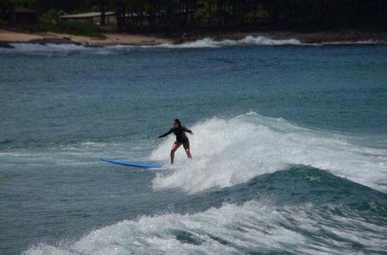 Jetty Betty Surf School: photo1.jpg