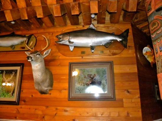 Salmon Falls Resort: Trophy wall in the dining room