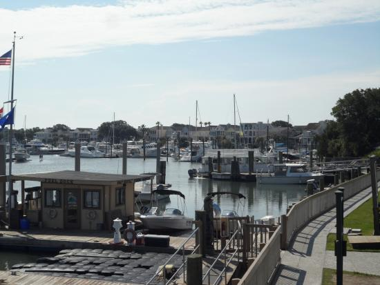 The Dockside: Boat dock