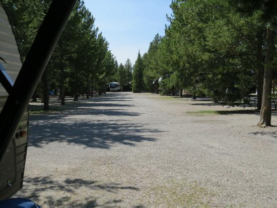 Rustic Wagon RV Campground & Cabins: View out to rest of campground from site #19 (straight back-in)
