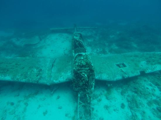 Primosten, Croacia: Wreck of Junkers 87 - one of the very few in the world close to Zirje Island
