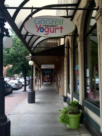 Goozell Yogurt: Fun place to enjoy some creamy yogurt!