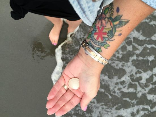 Quinault Beach Casino: Collecting Shells