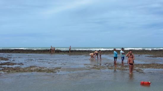 Japaratinga Beach: recifes de corais e piscinas naturais