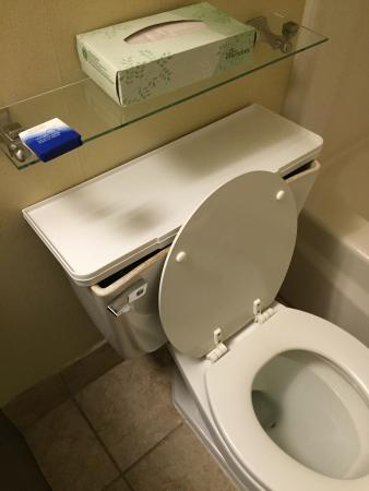 Best Western Sovereign Hotel - Albany: Horrible conditions