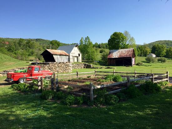 Farmhouse Inn at Robinson Farm: Back yard