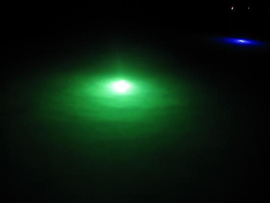 Glow Worms Safari in Bermuda with Ana Luna Adventures
