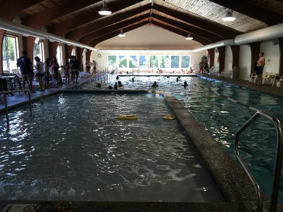 Black Bear Lodge: Pool