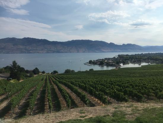 West Kelowna, Canadá: Quails' Gate Winery