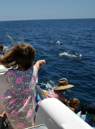 Dana Point, CA: Exciting for all ages