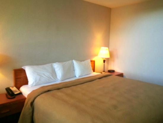 Econo Lodge Surrey: King Suite w/Kitchenette