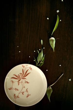 Authentique Home: Ancient Chrysanthemum